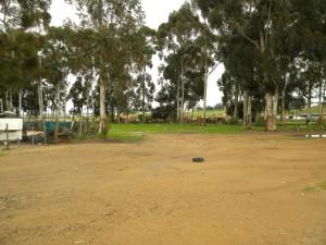 Fisantekraal land for future development